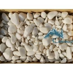 Галька мраморная кремовая 20-40 мм